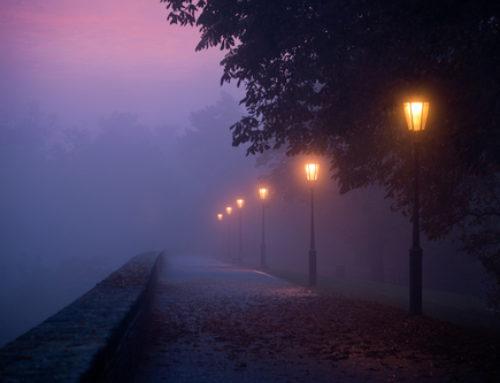 Finding a Way Through the Fog